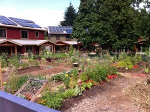 gc-community-garden
